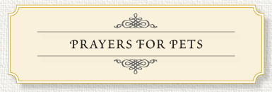 Prayer for Pets for Memorial Prayer Cards.